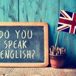 Lengua inglesa: perfil y plan de estudios